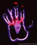 foto-biopolya-ruki-cheloveka